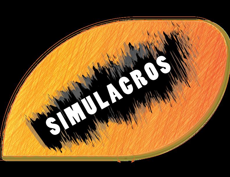 LOGO SIMULACRO 1